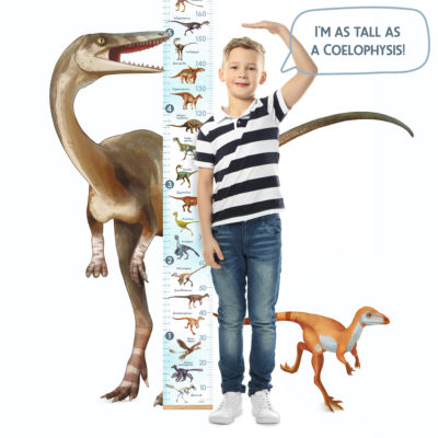 Lifeliko Growth Chart Blue